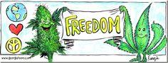 Georgia Toons - Freedom!  Cannabisdigest.ca #CannaDigest #Hempology101 #420 #Cannabis #WeedNews #StonerThings #HighLife #HighSociety #CannaCommunity #CannaScience #CannaNews #AlternativeNews #CannaLove #420Stuff #GetHigh #SmokeIt #News