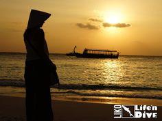 Achtung peinlich! Diese Fettnäpfchen solltest Du unbedingt vermeiden! 10 Tipps für Deine Maledivenreise - Life&Dive