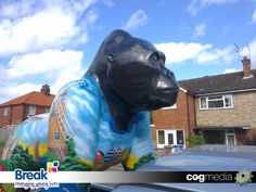 GoGoGorillas Nelson pays a visit to the COGmedia studio ahead of the summer of colour charity event for Break. Charity Event, Colour, Studio, Summer, Life, Design, Color, Summer Time, Summer Recipes
