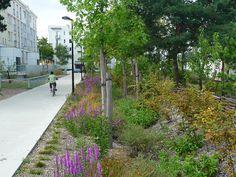 Les Richollets Park Landscape, Landscape Architecture, Landscape Design, Rain Garden, Terrace Garden, Urban Garden Design, Drainage Solutions, Green Street, Urban Setting