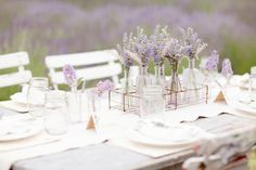 Lavender has many benefits for your home.