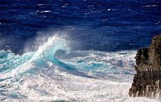 Beautiful waves of Hawaii