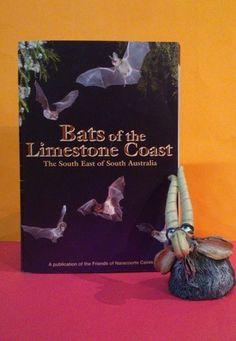 Bat Books — Bats_Rule! Help Save WildLife