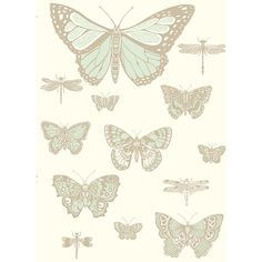 Buy Cole & Son Butterflies & Dragonflies Wallpaper Online at johnlewis.com