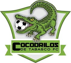 Cocodrilos de Tabasco (Tabasco, Mexico) #CocodrilosdeTabasco #Mexico (L23321)