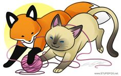 Fox and Siamese Cat by Stupid Fox
