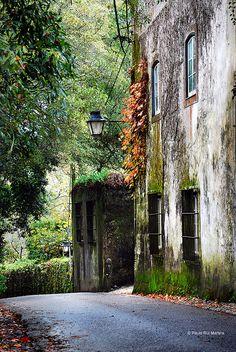 Alma Portuguesa, allthingseurope: Sintra, Portugal (by Paolo Rui...