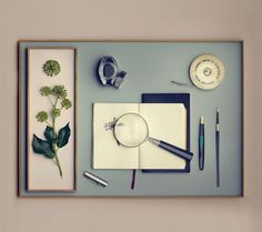 Taca Munk Collective 10x6_designzoo_design_stylowe_nowoczesne_ | Designzoo