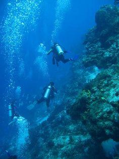 Drift dive Santa Rosa Wall - at Cozumel Mexico.
