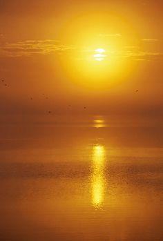 ✯ Okeechobee Sunrise