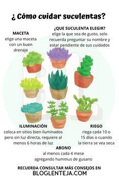Terrarium Plants, Garden Plants, House Plants, Herb Garden Design, Love Garden, Plante Carnivore, Plants Are Friends, Home Vegetable Garden, Natural Garden