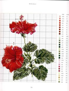 Thea Gouverneur Flower Portraits in cross stitch Hibiscus Counted Cross Stitch Patterns, Cross Stitch Charts, Cross Stitch Designs, Cross Stitch Embroidery, Cross Stitch Needles, Cross Stitch Rose, Cross Stitch Flowers, Cross Stitching, Needlework