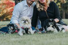 Engagement and FURBABIES! in Butler PA https://www.sandrachile.com/journal/butler-engagement-furbabies