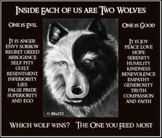Here is another version of the 2 wolves story. Some sources said it's not a Cherokee legends. Regardless, it's a very wise story.