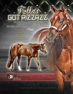 Fellas Got Pizzazz 2012 AQHA/APHA stallion RBC Stables Live Oak, Fl