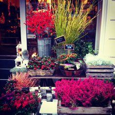 flower shop in Berlin