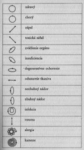 KYVADLO | Hara - Ezoterika, mystika, duchovno, zdravie, zaujimavosti Reiki, Mystery, Mandala, Mandalas