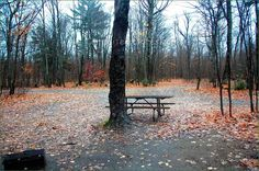 Cansibay Lake Algonquin Provincial Park Ontario Canada Algonquin Park, Outdoor Furniture, Outdoor Decor, Ontario, Canada, Image, Backyard Furniture, Garden Furniture, Outdoor Furniture Sets