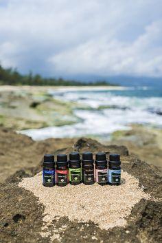 Diffuser, Essential Oils, Essentials, Essential Oil Uses, Essential Oil Blends