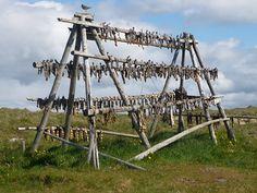 fish drying rack..