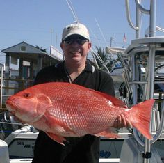 Texas Deep Sea Fishing -I want to catch an oversized colorful fish too! Deep Sea Fishing, Gone Fishing, Fishing Tips, Fishing Lures, Surf Fishing, Fishing Tackle, Salt Water Fish, Salt And Water, Only In Texas