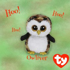 Owliver the Owl is NEW to the Ty Store!