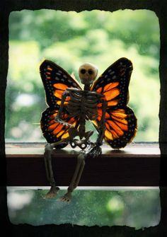 Dollar store skeleton and dollar store butterfly's make these Halloween fairies