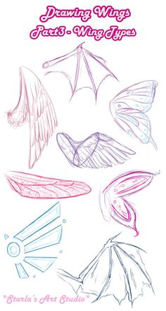 How to draw Types Wings Starlas Art Studio art Anime art Art Draw starla Starlas Studio Types Wings Pencil Art Drawings, Art Drawings Sketches, Random Drawings, Body Sketches, Drawing Lessons, Drawing Tips, Drawing Ideas, Anime Drawing Tutorials, Sketching Tips