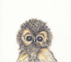Baby animal print for nursery  Owl digital download