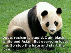 Pandas against racism!! Reason #20934 that I LOVE PANDAS