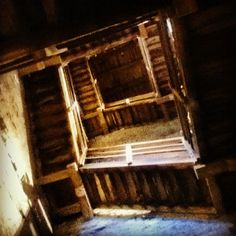Asinelli Tower: nobody warned me there are 498 steps in this bloody tower! - Instagram by @michaelturtle