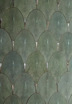 Shagreen Scales More