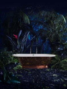 Not only can our baths be found in locations globally, from the tropical and warm Seychelle islands to colder northern coasts of Norway: This shoot was a tropical paradise from our 2014 advert featuring our show stopping copper Tay! Cast Iron Bathtub, Copper Bath, Paint Matching, Large Plants, Tropical Paradise, Cladding, Indoor Plants, Baths, It Cast