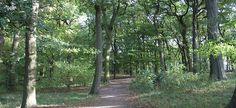 Warley Woods - Smethwick's 100-acre, Green Flag award winning community park which is managed through a Community Trust - with its mix of open meadow and nine-hole golf course - has some of the region's most beautiful woodland, offering nature walks, trails and free parking.