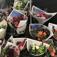 My Flower, Beautiful Flowers, Flower Aesthetic, Pretty Pictures, Wall Collage, Aesthetic Pictures, Tulips, Planting Flowers, Greenery