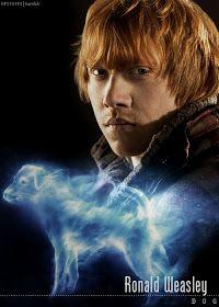 Hogwarts Alumni: Harry Potter Cast Patronus