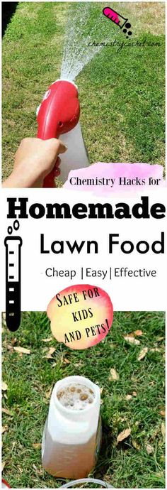 Homemade Lawn Food That's Safe for Kids and Pets