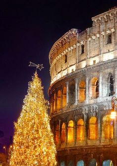 Christmas in Rome ~