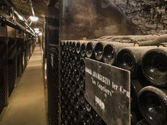 Beginners Guide to French Wine