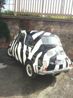 Zebra Car Oh Yeah Our Zebra Pattern Auto Mats Would Be