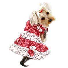 An adorable red and white polka dot sundress for small dogs with contrasting flowers. Girl Dog Clothes, Puppy Clothes, White Polka Dot Dress, Polka Dots, Knit Dog Sweater, Designer Dog Clothes, Dog Boutique, Pink Cotton Candy, Girl And Dog