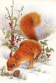 Christmas Cabin in the Pines🌲🐾 Christmas Scenes, Christmas Animals, Christmas Pictures, Christmas Art, Illustration Noel, Christmas Illustration, Animal Paintings, Animal Drawings, Squirrel Art
