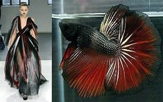 Fish-Inspired Fashion: Siamese Fighting Fish Dresses at Rodarte Fish Fashion, Fashion Art, Fashion Ideas, Jeanne Lanvin, Fashion Design Sketchbook, Fashion Sketches, Fashion Images, Fashion Details, Siamese Fighting Fish