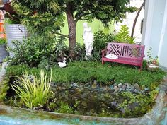 Miniature Gardening...