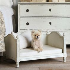 Eloquence Theodore Stone Dog Bed. Cutest dog bed EVER