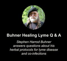 Buhner Healing Lyme Q & A | An herbal protocol for lyme and co-infections