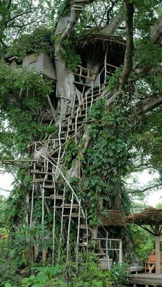 How To Build A Treehouse ? This Tree House Design Ideas For Adult and Kids, Simple and easy. can also be used as a place (to live in), Amazing Tiny treehouse kids, Architecture Modern Luxury treehouse interior cozy Backyard Small treehouse masters Building A Treehouse, Treehouse Ideas, Tree House Designs, Tree Tops, In The Tree, Big Tree, Future House, Outdoor Living, Beautiful Places