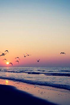 The Sun Will Shine: Photo