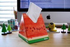 watermelon shaped tissue box.