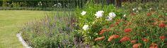 Family#garden#mixed border www.hortustuinontwerp.be